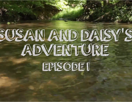 Susan & Daisy's Adventure: Episode 1