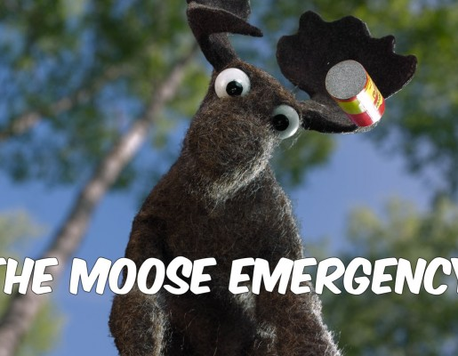 The Moose Emergency