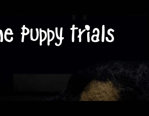 The Puppy Trials